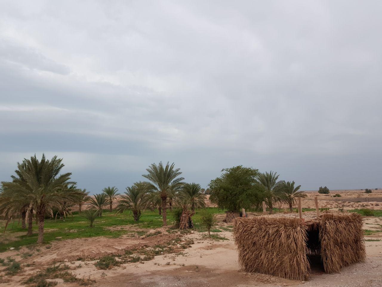 مهدی پارسا - عکس از سفر به بوشهر ۹۷ - Mehdi Parsa Bushehr trip